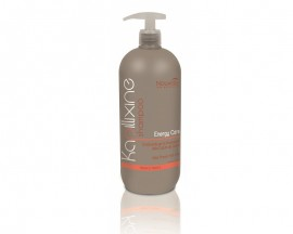 Nouvelle Energy Care Shampoo